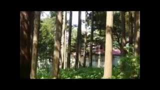 上ノ国町の歴史伝説