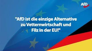 EU-Wahl 2019 | ❝AfD ist Wahlkampfmaschine!❞
