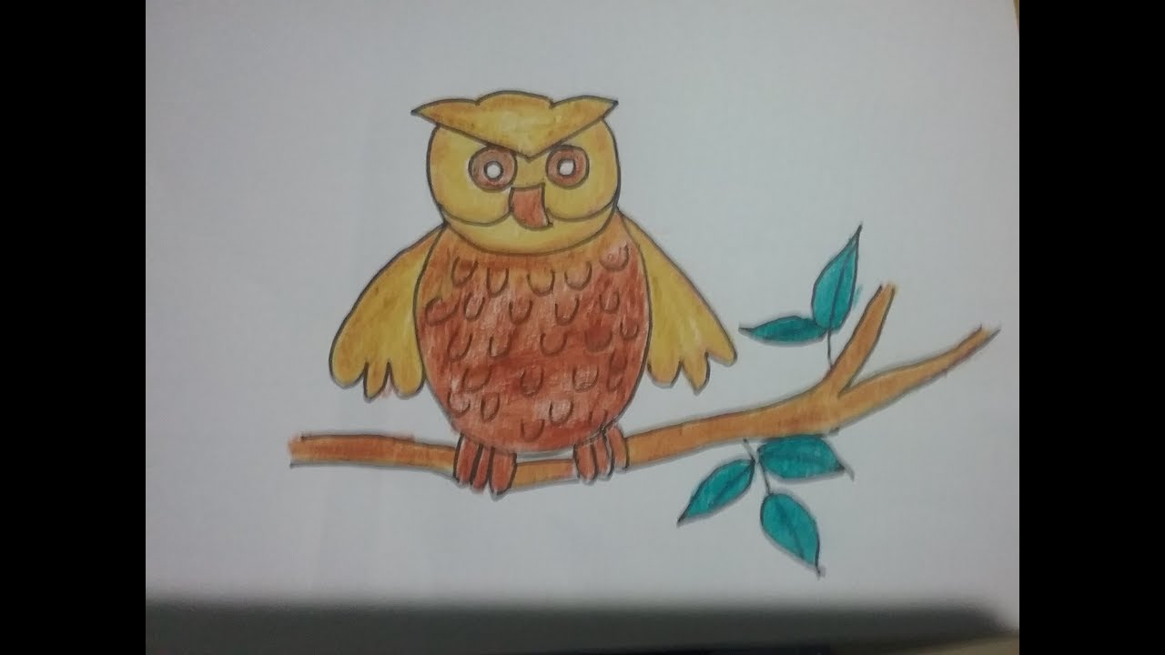 how to draw an owlowl drawing with basic shapes oilpastel drawing for kids