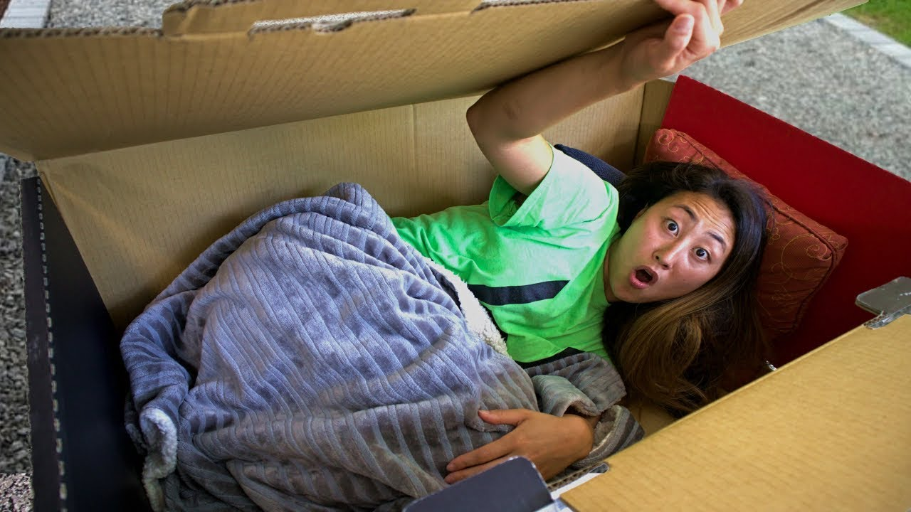 I MAILED MYSELF HOME IN A BOX FORT!! (WILL IT WORK?)