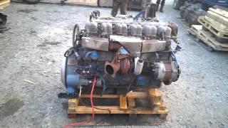 Запуск двигателя D6AB с автобуса Kia Granbird с замерами давления масла(Автобус/Легковой/Грузовик/ Hyundai: Grace - D4BF D4BA D4BX.С электронным ТНВД, с механическим ТНВД. Starex - D4BH D4BB D4BF D4CD 145..., 2015-12-16T07:17:05.000Z)