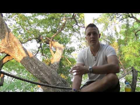 Wild Eye - Kafue & Busanga Plains Feedback
