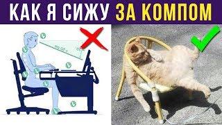 Приколы с котами. Как я сижу за компом | Мемозг #142