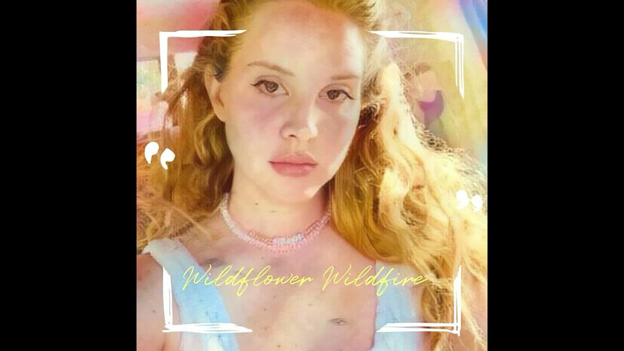 Lana Del Rey - Wildflower Wildfire (Official Audio)