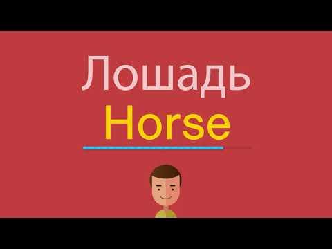 Как по английски произнести лошадь