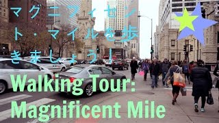 Come with me on a walking tour of Chicago's famous shopping distric...