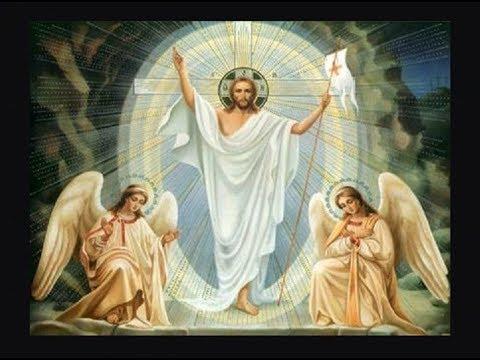 Jesus Der Sohn Gottes