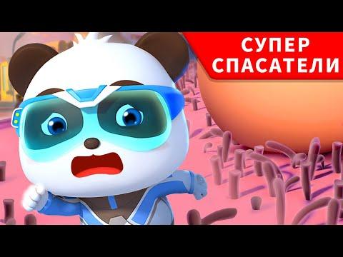 Помочь раненому Геккону | Суперспасатели | Малыш панда | Kids cartoon | BabyBus