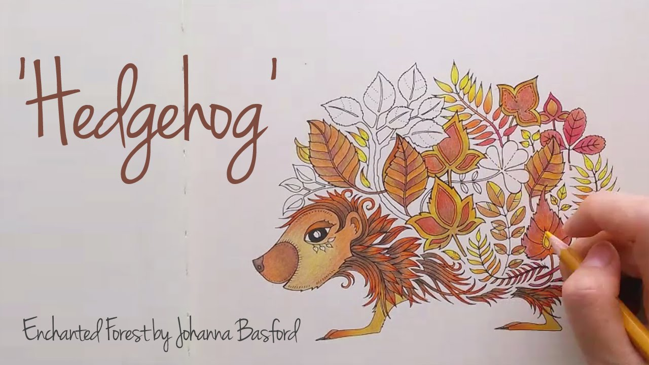 Enchanted Forest Johanna Basford Hedgehog YouTube