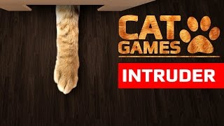 CAT GAMES - INTRUDER (ENTERTAINMENT VIDEOS FOR CATS TO WATCH)