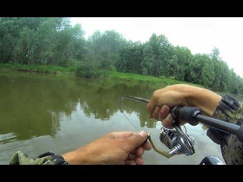 РЕБЯТА МЫ ПОПАЛИ НА СУДАКОВЫЙ ВЫХОД!!!Рыбалка на Оби 2019,судак на джиг, trofi fishing