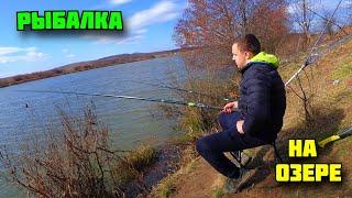 Рыбалка на озере Поймал карпа