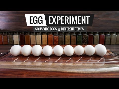 Sous Vide EGG EXPERIMENT - Opening Several Eggs at Different Temps