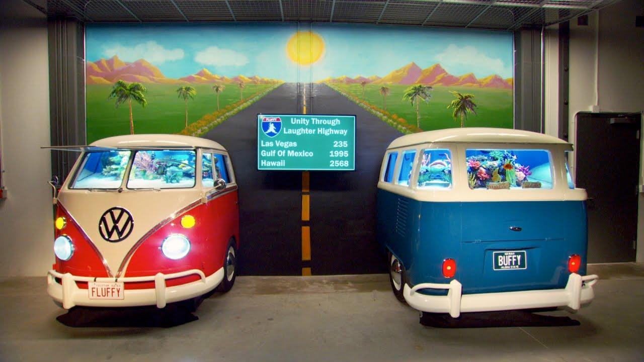 Vw Bus 2015 >> Gabriel Iglesias' VW Microbus Aquariums Revealed - YouTube