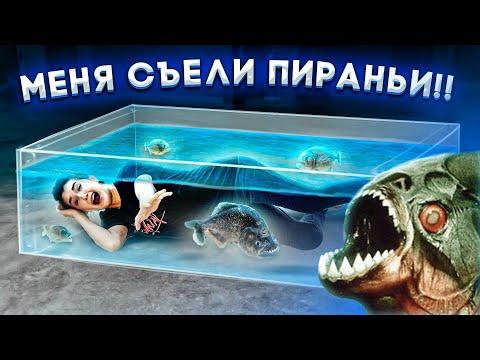 24 ЧАСА С ПИРАНЬЯМИ ЧЕЛЛЕНДЖ!! Искупалась с самыми опасными рыбами..
