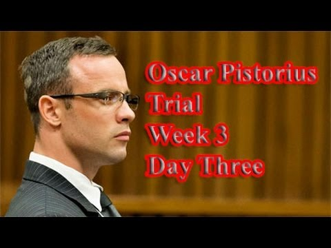 Oscar Pistorius Trial: Wednesday 19 March 2014, Session 2