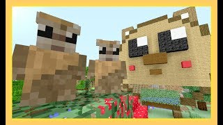 Twins ~ GOODBYE HAMSTER HOME ~ [49] - Sqaishey & Stampy