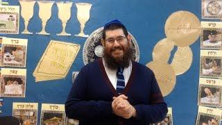 Rabbi B - Chad Gadya