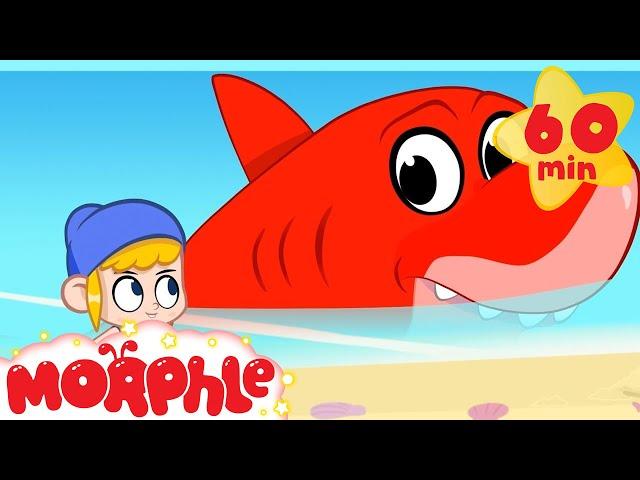 Super Shark - My Magic Pet Morphle | Cartoons For Kids | Morphle TV | Mila and Morphle