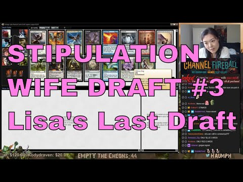 MTG - Stipulation Wife Draft #3 - Lisa's Last Draft