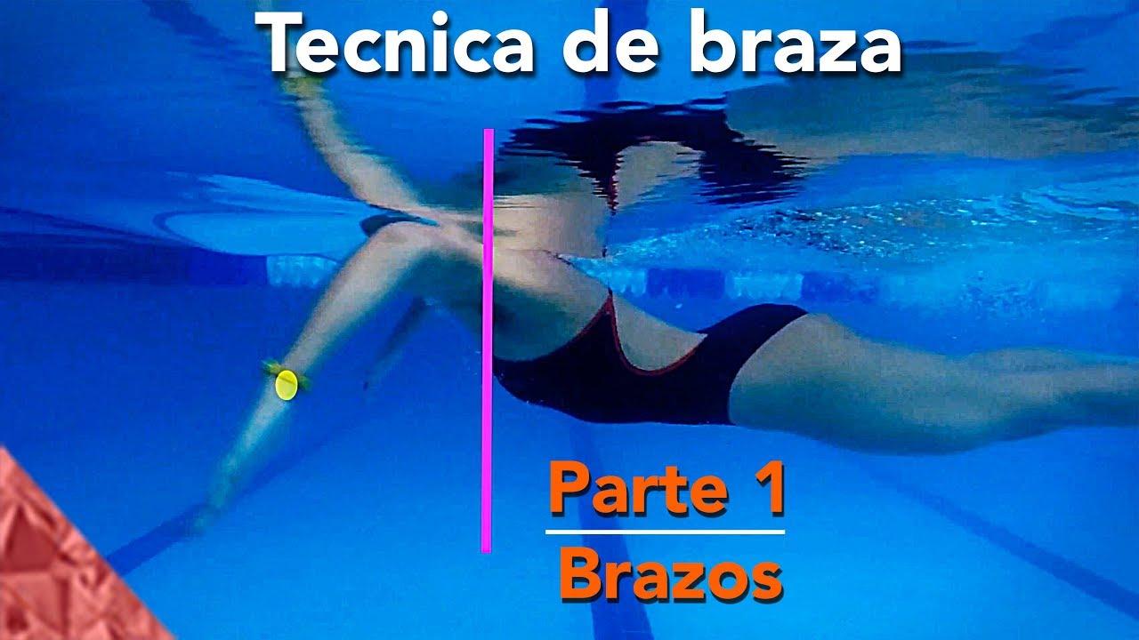 Tecnica de natacion de estilo pecho braza parte 1 brazos for Planos de piletas de natacion