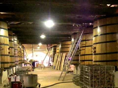 シャトー・ランゴア&レオヴィル・バルトンのワイン貯蔵庫20060614 Barton