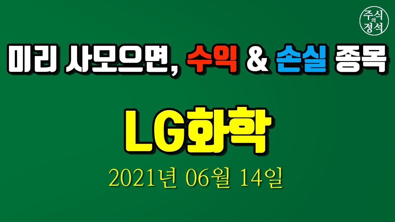 [LG화학] 종목분석 2021년 06월 14일