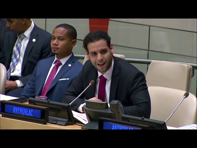 Consejo de Derechos Humanos (CDH) en la Reunión Plenaria de NYMUNLAC 2019.