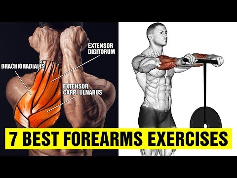 7 Best Forearms Exercises - Gym Body Motivation