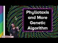 Live Stream #54 - Phyllotaxis and More o