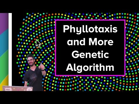 Live Stream #54 - Phyllotaxis And More On Genetic Algorithms
