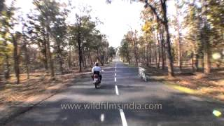 Travelling Jabalpur to Kanha by road