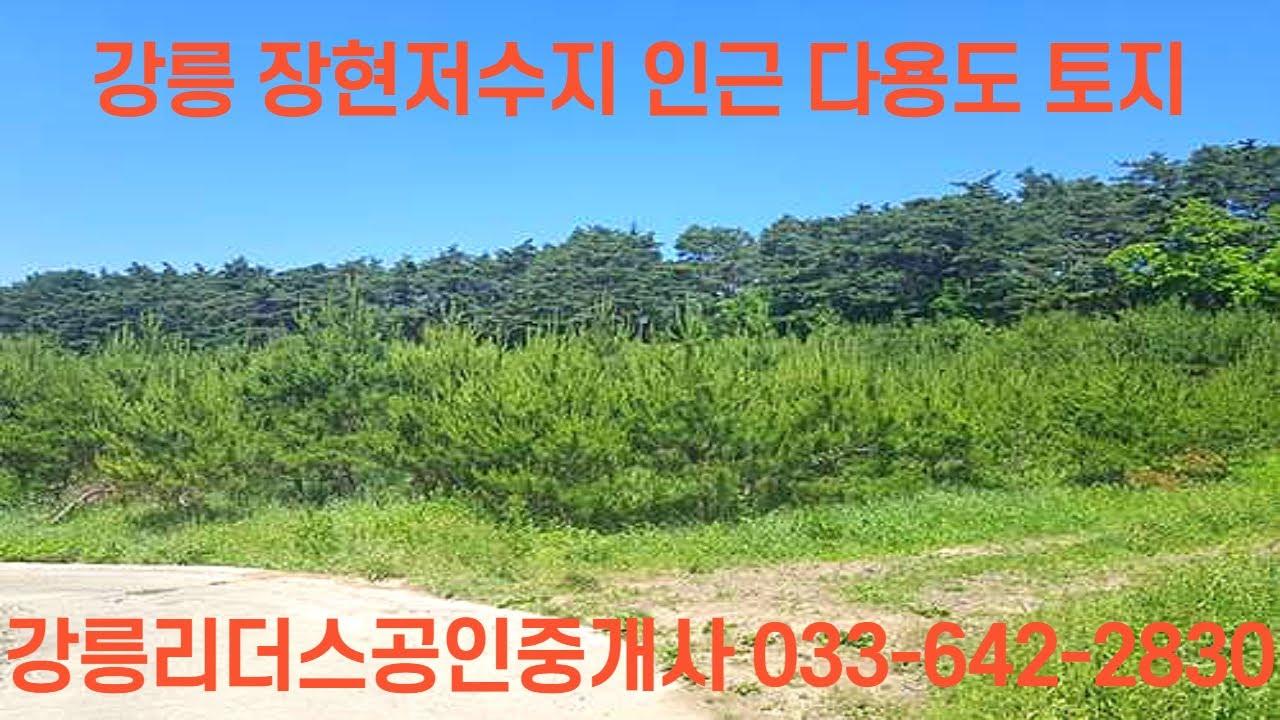 강릉 장현저수지인근 다용도 토지 리더스공인중개사033-642-2830