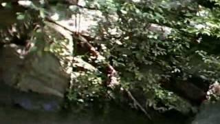 Full Ocoee River part 18