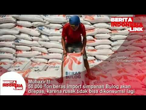 Mubazir, 50 ribu Ton beras import simpanan Bulog akan dilepas karena rusak dan tidak bisa dikonsumsi