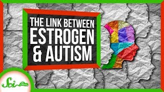 The Unexpected Connection Between Estrogen and Autism | SciShow News