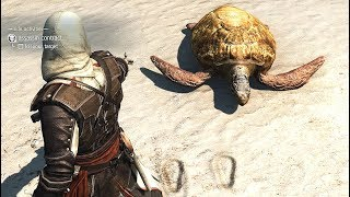 Assassin's Creed 4 Black Flag Assassin Contract & Perfect Stealth Kills