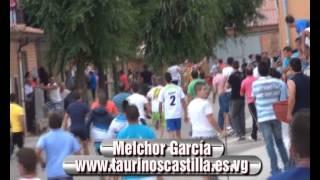 Resumen 2012, Taurinos Castilla