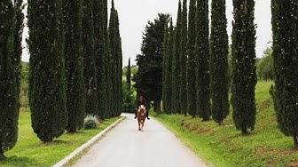 Aktiiviloma Toscanan Maremmassa