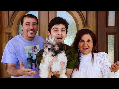 WELCOME THE NEWEST MEMBER TO THE FAMILY!! **FINALLY** | FaZe Rug