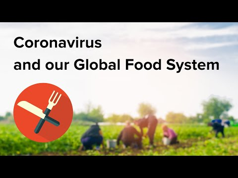 Coronavirus and the global food system