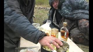 Бурундук с картошкой.FRECHE EICHHÖRNCHEN.BEAST LIPPY.забавные животные