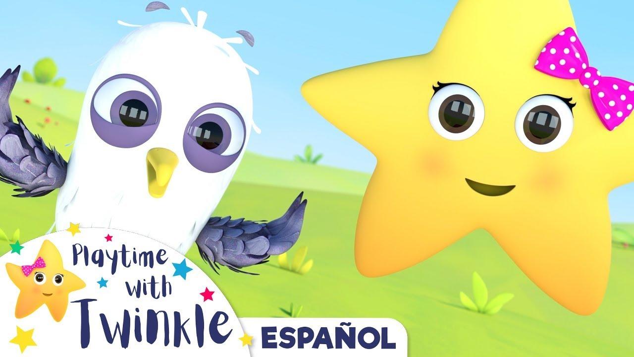 Twinkle y los Animales | Aprender con Twinkle | Canciones Infantiles | Little Baby Bum Latino