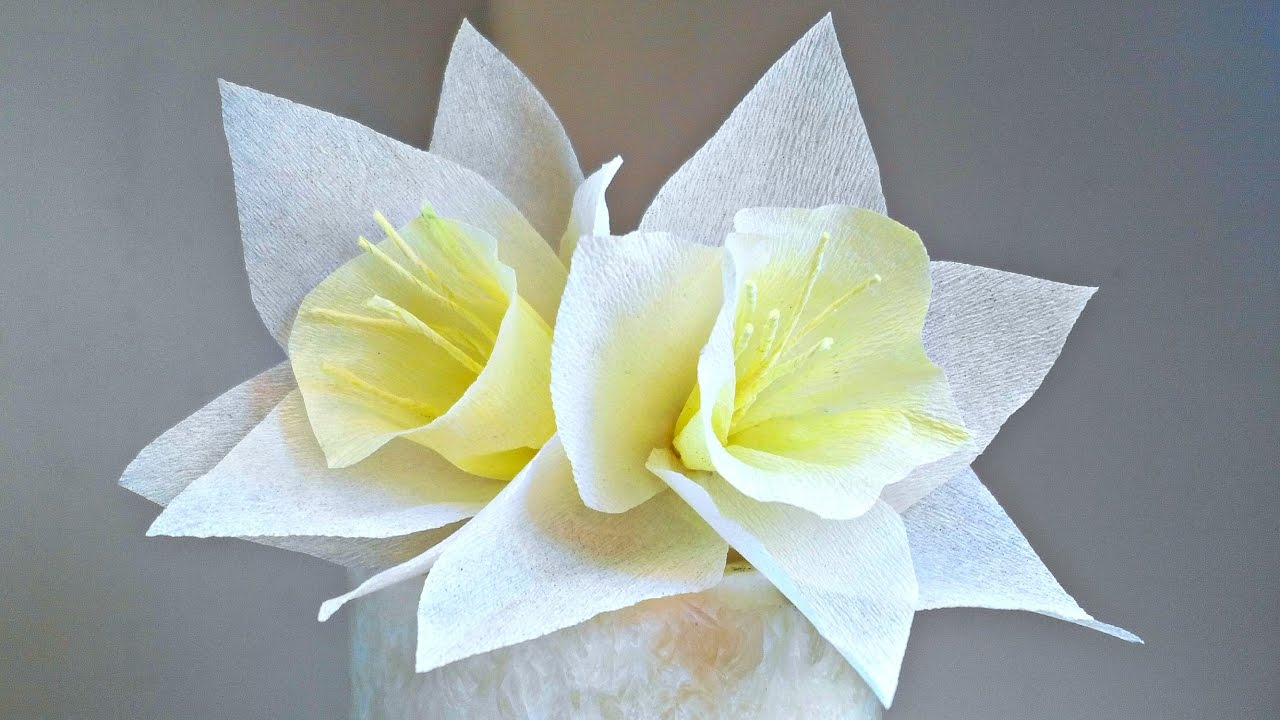 Daffodils narcissus crepe paper flower for decoration arts and daffodils narcissus crepe paper flower for decoration arts and crafts paper flowers easy for kids dhlflorist Images
