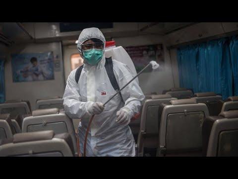Как распознать коронавирус, когда проявляются симптомы