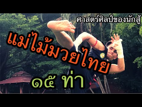 EP.10 | แม่ไม้มวยไทย 15 ท่า |  古泰拳母招15套路 #มวยโบราณ