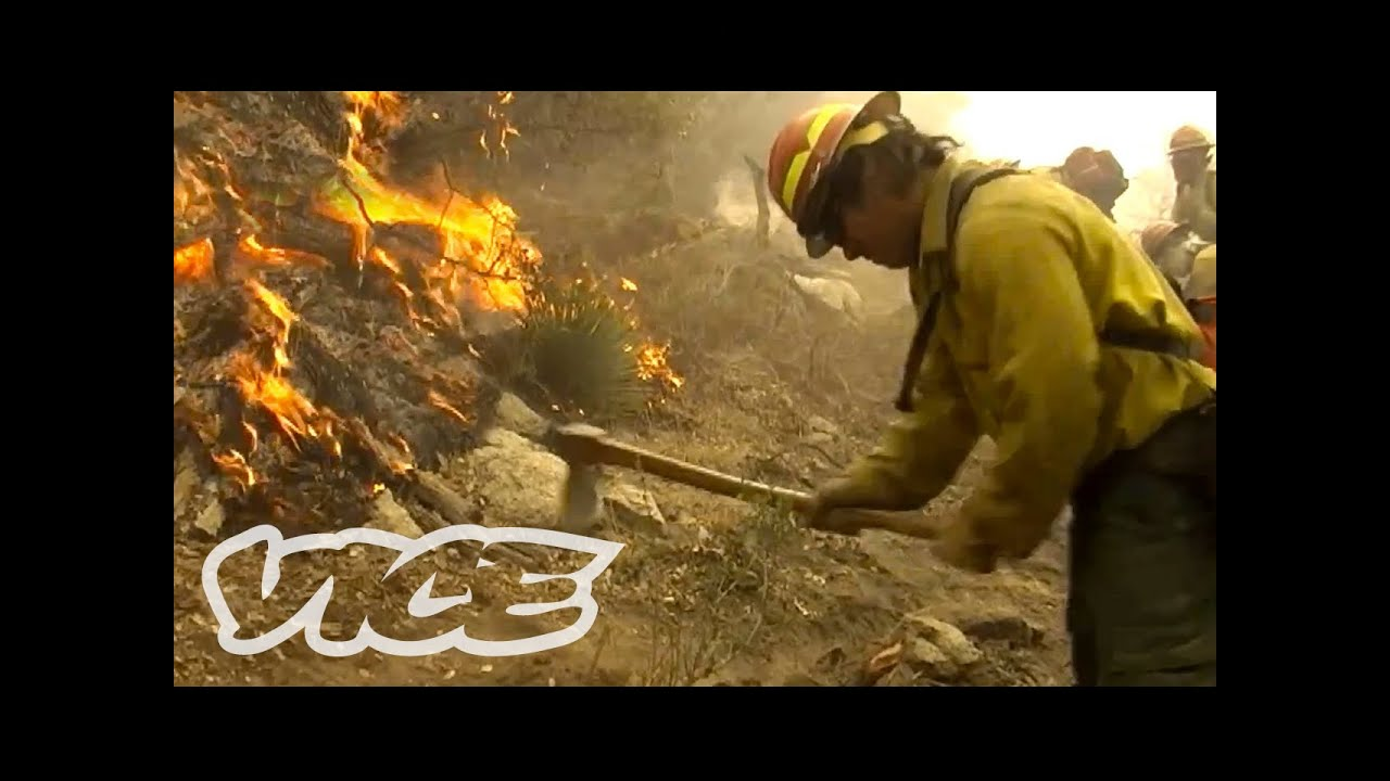 Firefighters tackle forest fires near Chernobyl that caused radiation ...