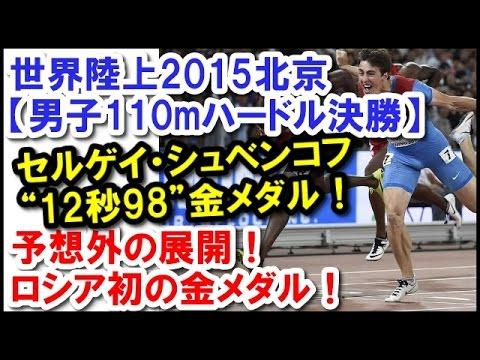 世界陸上2015北京【男子110mハー...
