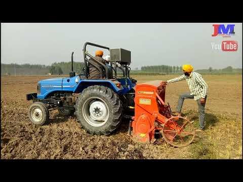 Indian Punjabi Agriculture Wheat
