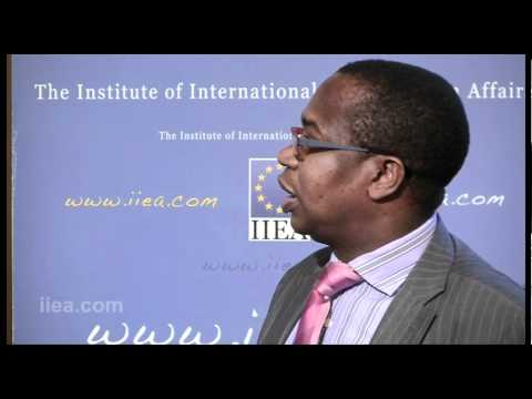Professor Mthuli Ncube on African Economic Policy and the Role of Private Business